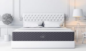 Try Any Mattress of Your Choice RISK-FREE @ Your Home With Free Delivery and Free Returns new-puffy-300x180 Layla vs. Puffy Mattress Review Mattress Comparison  mattress review puffy vs layla layla vs puffy compare layla vs puffy mattresses