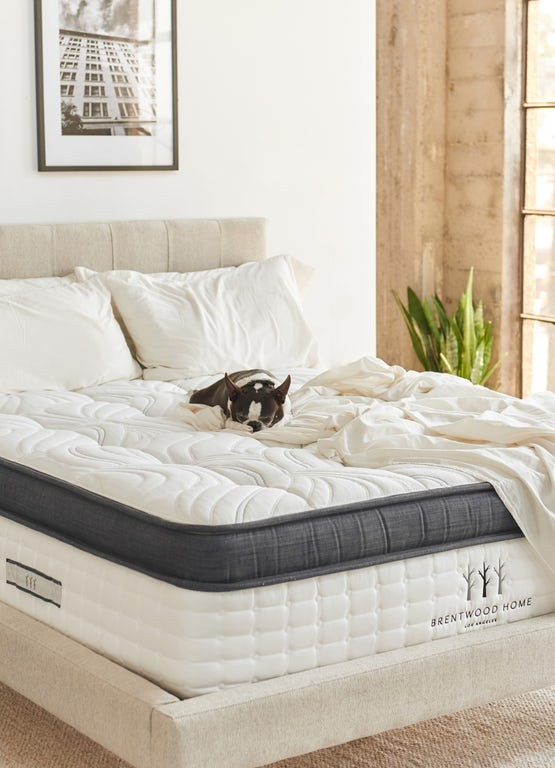 Try Any Mattress of Your Choice RISK-FREE @ Home W/ Free Delivery cedar-brentwood-latex-hybrid Best Latex Coil Hybrid Mattress Reviews